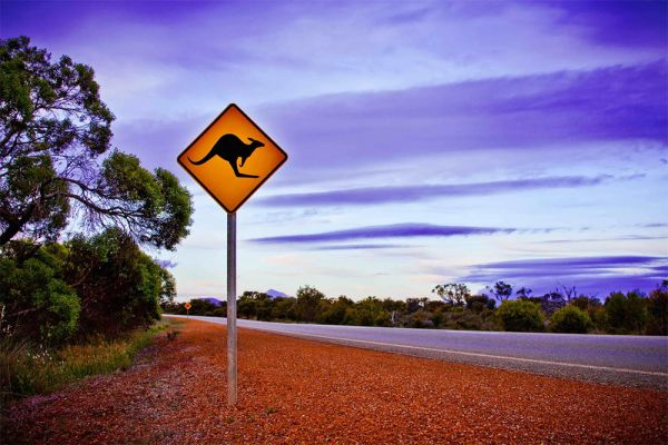 a desert highway with a kangaroo warning sign