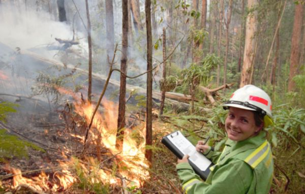 Person observing bushfire