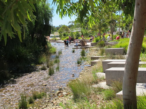 People interacting with wetlands